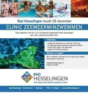 flyer Zeemeerminzwemmen 28-12-2018 Bad Hesselingen