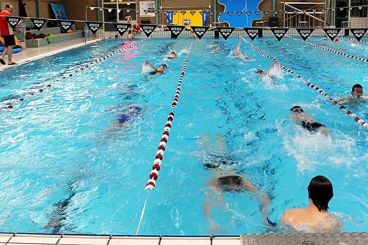 tweeka de Reest zwemvereniging wedstrijdbad